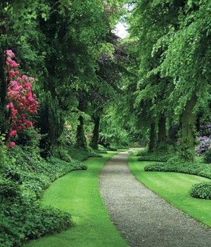 Natural Landscape, Landscape Image, Landscape Pictues