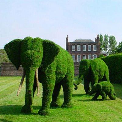 Amazing Landscape Garden
