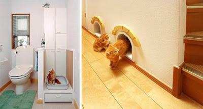 home design for pet 19