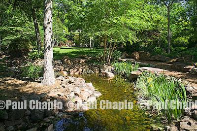 garden landscape architecture 12