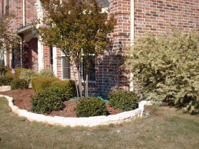 Outdoor Landscape Design Servise