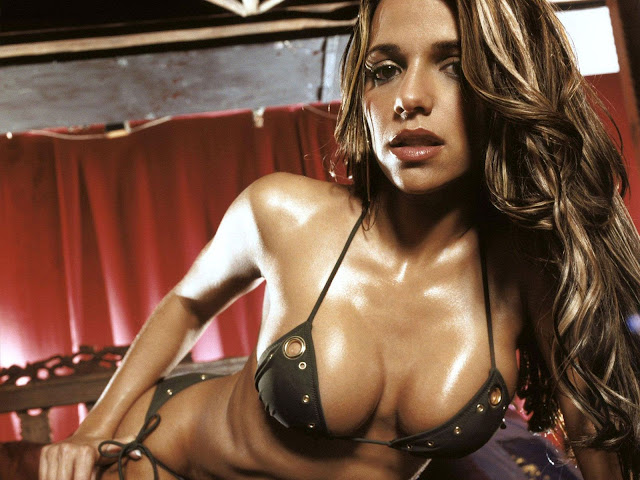 Sexiest Model In The World - Vida Guerra HQ Pictures