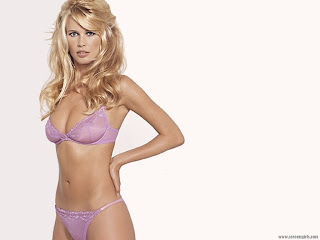 The Hottest German Model: Claudia Schiffer Bikini Pictures 1024 X 768