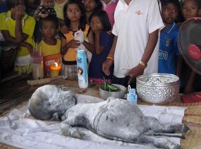 Makhluk Aneh Ditemukan di Thailand dan Disembah Layaknya Dewa