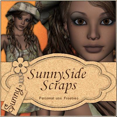 http://sunnysidescraps.blogspot.com/2009/07/posertubes-sunny.html