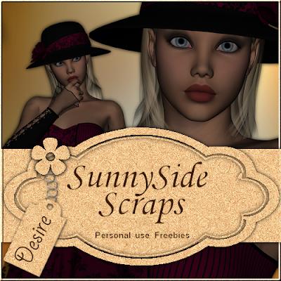 http://sunnysidescraps.blogspot.com/2009/08/posertubes-desire.html
