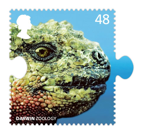 darwin iguana stamp