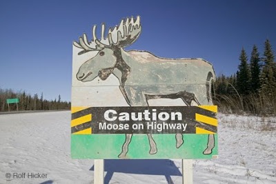 Craziest Collection of Over-the-Top  Road Signs Seen On www.coolpicturegallery.net