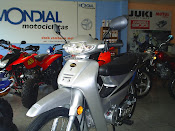 MONDIAL LD110S