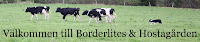 Borderlites Website
