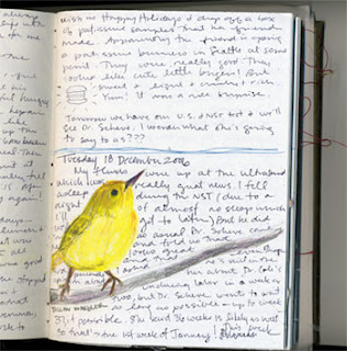 external image yellow_bird.jpg