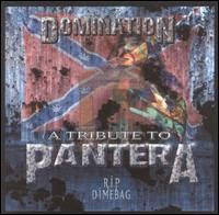 Domination-A_Tribute_To_Pantera_(R.I.P_Dimebag)-2005-SMO