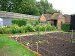 My favourite gardens