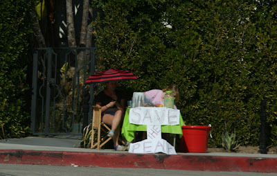 Save the Peak Hollywood protest stand