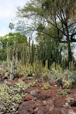 Desert Garden Huntington