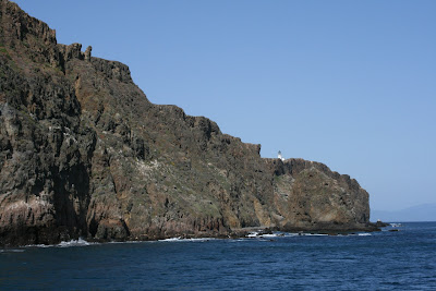 Anacapa Island cliff face