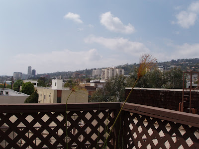 View from condo roof terrace