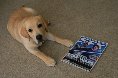 Hollywood hound and SFX magazine star at 16 weeks