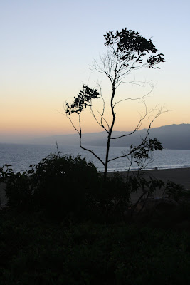 View of the Pacific Ocean coastline from Palisades Park in Santa Monica
