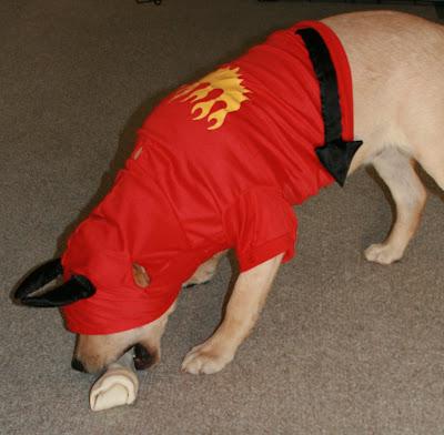 Halloween Puppy Cooper
