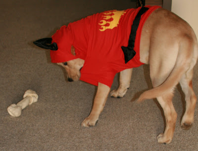 Halloween Devil Cooper