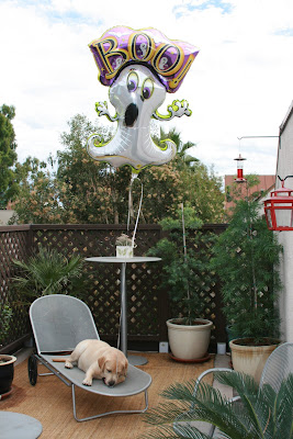 Ghost balloon & Halloween pup