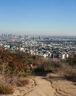 Runyon Canyon pup with Downtown LA in the background