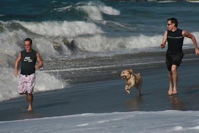 Beach boys of Sycamore Cove