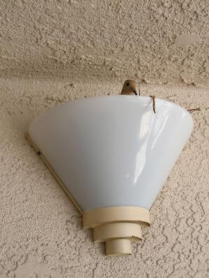 Hallway light bird nest