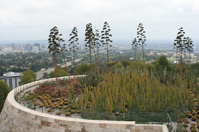 View from The Getty Center Cactus Garden