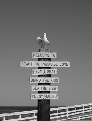 Paradise Cove sign, Malibu