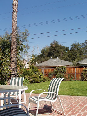 Our back garden in Burbank