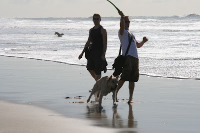 Huntington Dog Beach pup fun