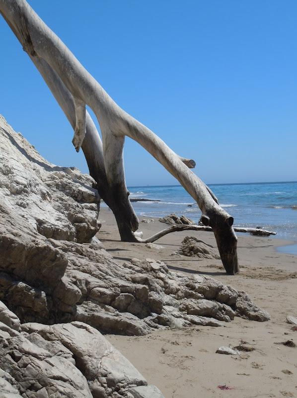 Hendry's Beach shoreline