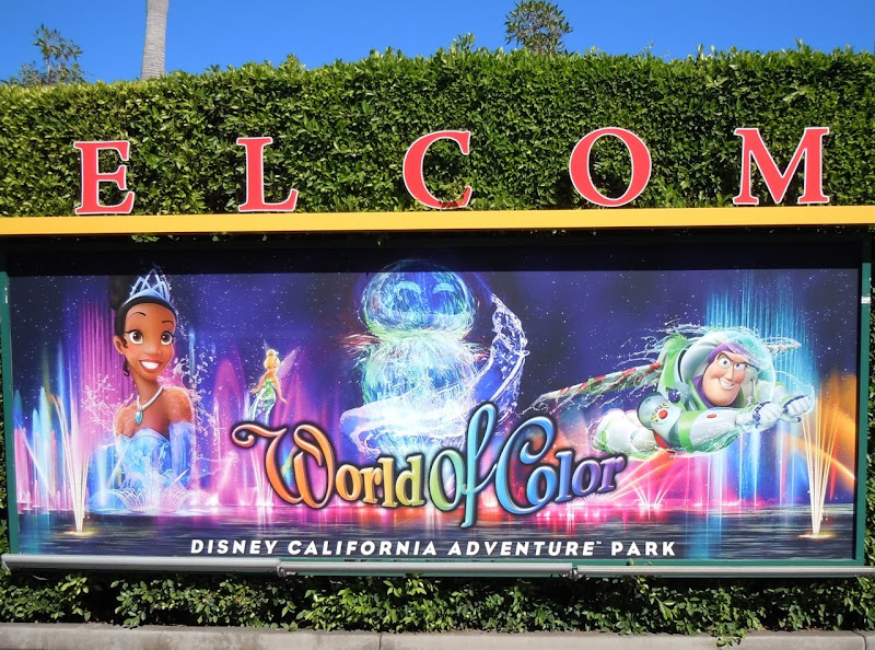 Disney World of Color banner