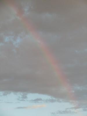 WEHO rainbow