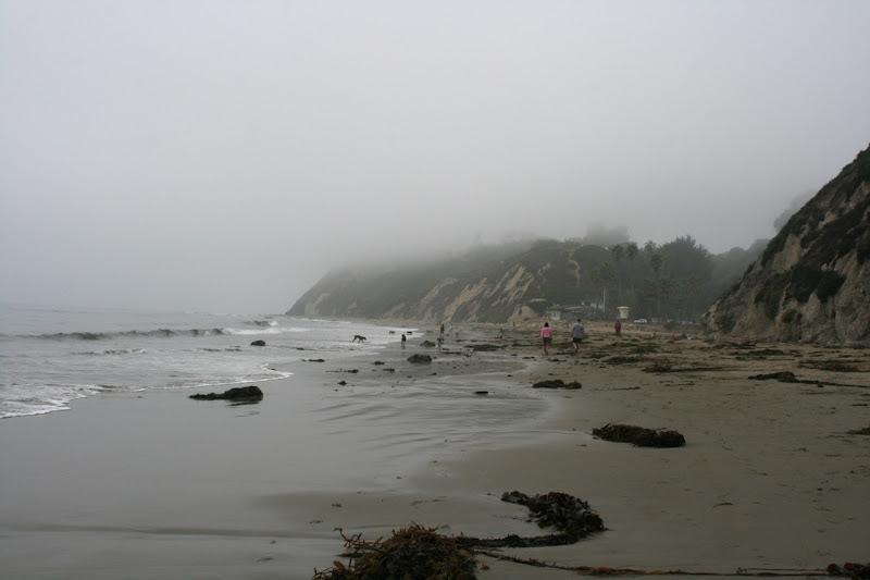 Misty Hendry's Beach Santa Barbara