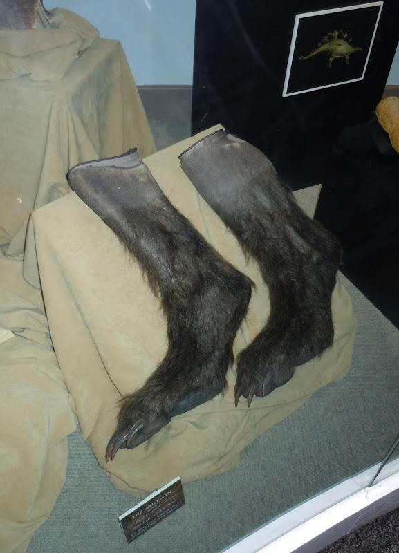 Wolfman prosthetic werewolf feet