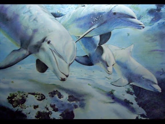 blog a cuadros: Cuatro delfines