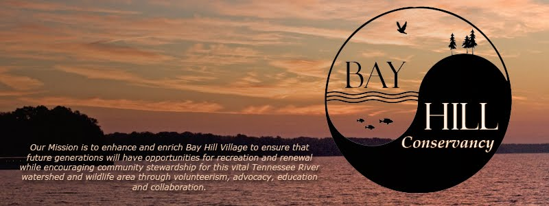 Bay Hill Conservancy