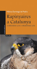 Rapinyaires a Catalunya.