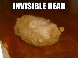 http://1.bp.blogspot.com/_GMdPyeNEG0I/RyQlmho0H_I/AAAAAAAAABw/CryAR80uJcQ/s320/invisible-head.jpg