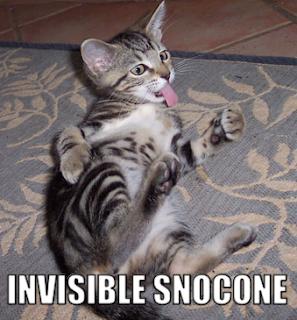http://1.bp.blogspot.com/_GMdPyeNEG0I/RyQmFho0IDI/AAAAAAAAACQ/YDH_mudt800/s320/invisible-snocone.png