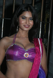 Sexy Savita Bhabhi in Jay Hind Party