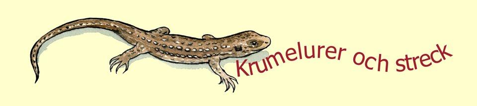 Krumelurer och streck