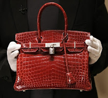 Hermes Crocodile