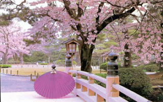 japanese sceneries spring