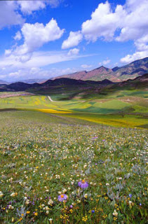 tibet china scenery