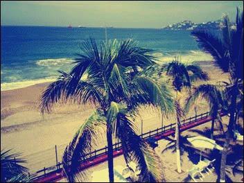 BEACH-...