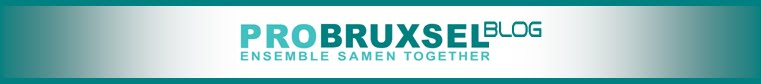 PRO BRUXSEL BLOG